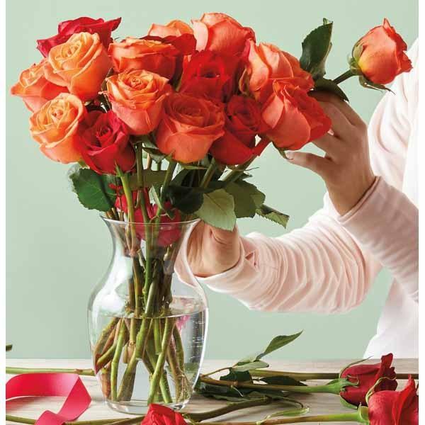 Aldi valentine's day gifts roses