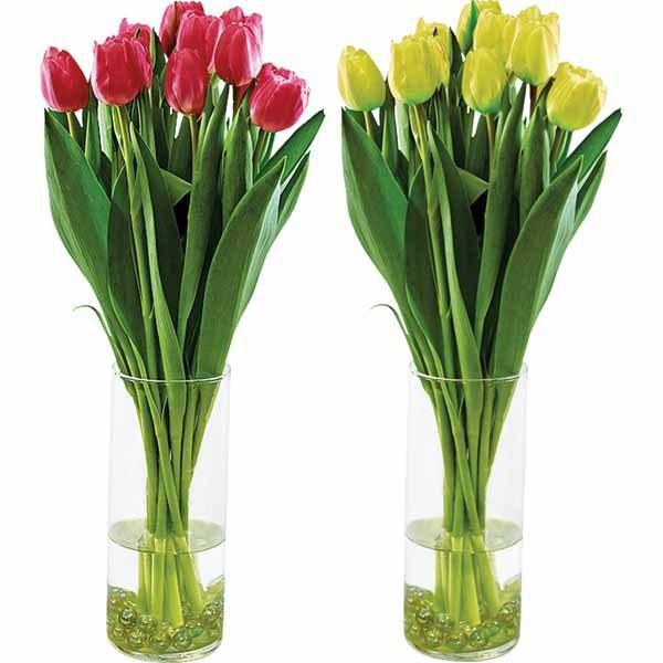 Aldi valentine tulips