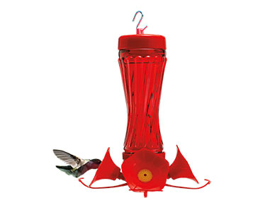 Hummingbird feeders available at Aldi stores
