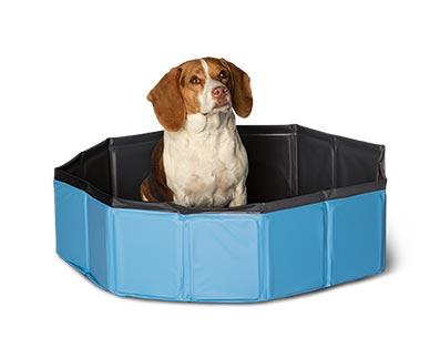 aldi dog pool