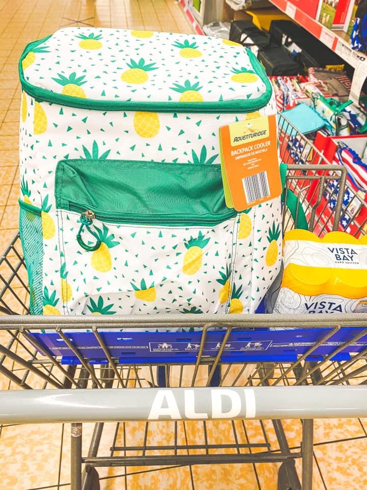 aldi pineapple backpack cooler