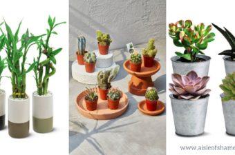 aldi plants coming in july
