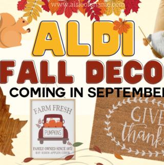 all the aldi fall decor in september