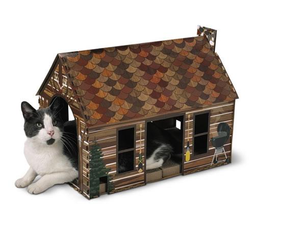 cardboard cat house at Aldi