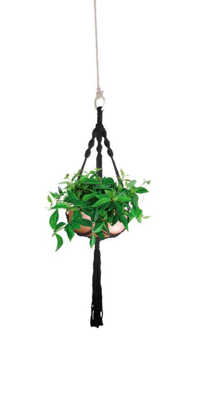 macrame plant hanger at aldi