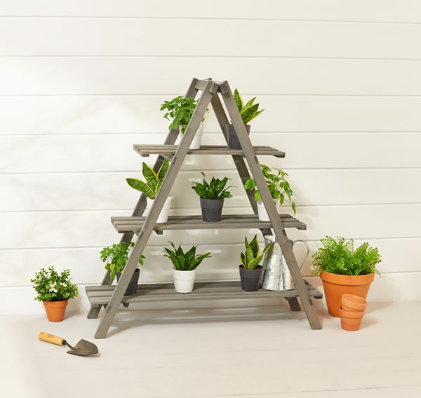 aldi plant ladder