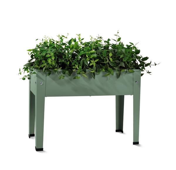 aldi mini raised garden planter