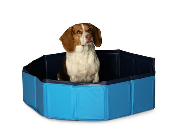 Aldi medium pet pool
