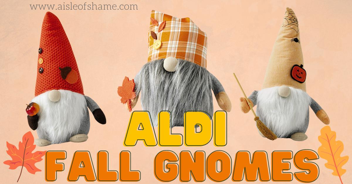 aldi fall gnomes