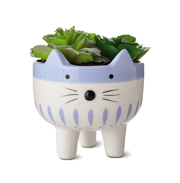 Huntington Home Mini Decorative Succulents cat